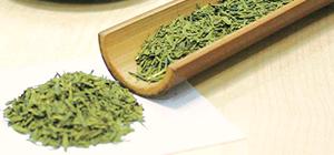 ②宇治茶発酵